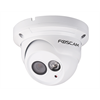 Foscam Indoor Outdoor Network Dome Camera With Night Vision, POE, 720p