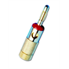 Channel Vision Banana plug - gold plated (Red Ring)
