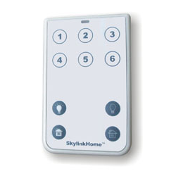 Skylinkhome 10 Button Wireless Remote Control