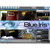 Blue Iris Professional IP Camera Recording Software License V4